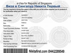 Виза в Сингапур образец